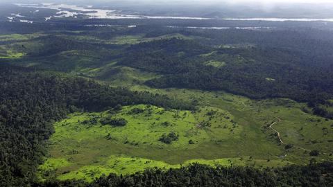 Locals in Amazon fight to preserve rainforest wildlife
