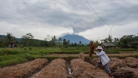 Bali villagers reluctant to leave despite high risk of eruption