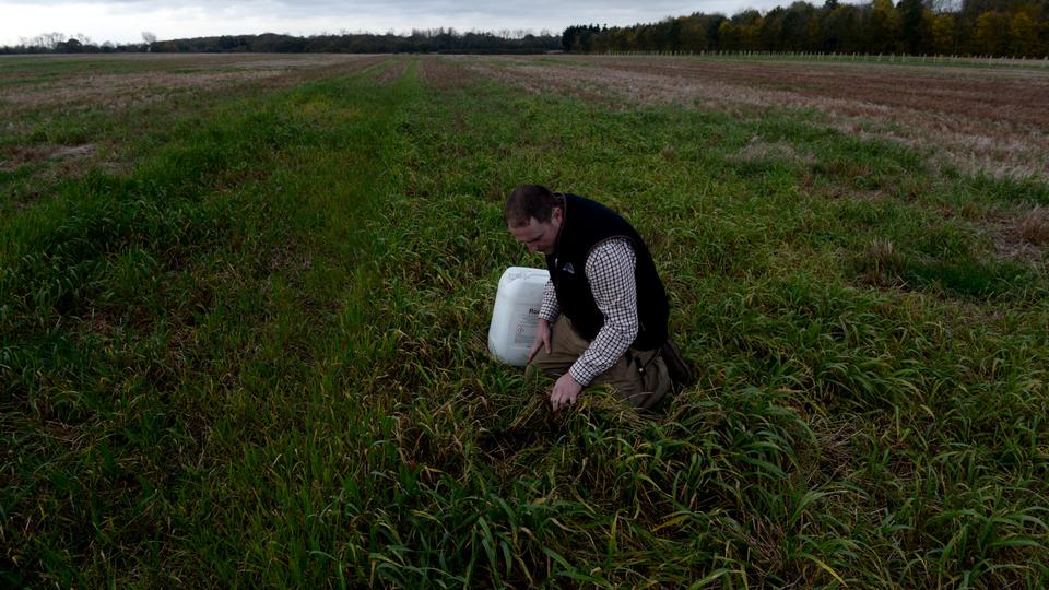 Farmer Edward Ford demonstrates the use of the weedkiller glyphosate on his arable farm in Brentwood, Britain on November 7, 2017.